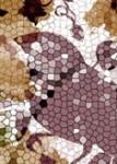 Birds  Pixels